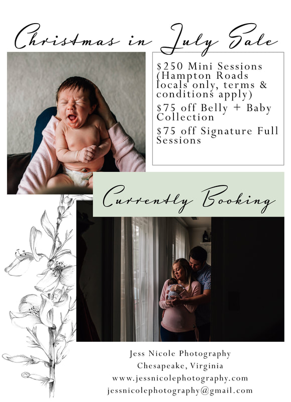 current offer flyer for jess nicole photography christmas in july sale