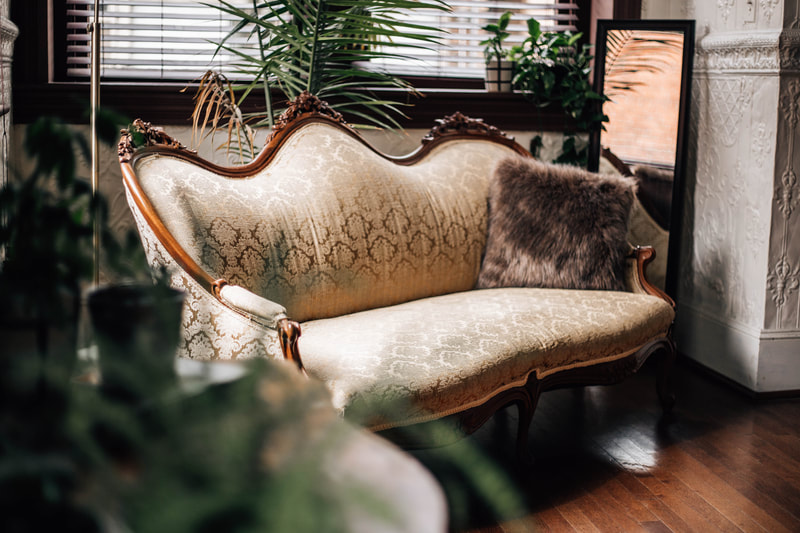 photo of vintage couch with houseplants surrounding