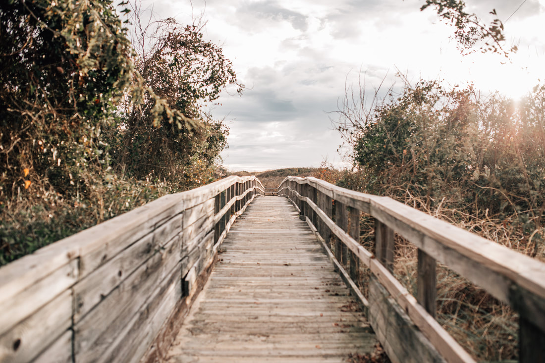 boardwalk in virginia beach, virginia